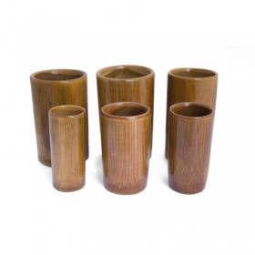 Bamboo suction cups Kit